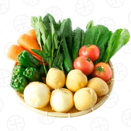 【初回購入者限定】お試し☆宮崎県産 旬の野菜8品セット